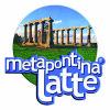 metapontinalatte